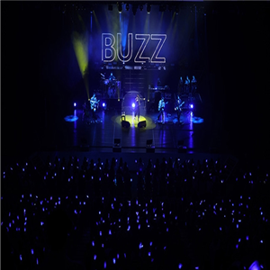 버즈,콘서트,연말,무대