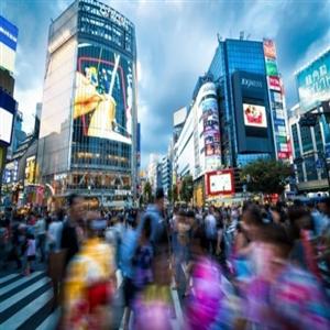 영향,일본,수준,시행,기업,이후,중소기업,악화