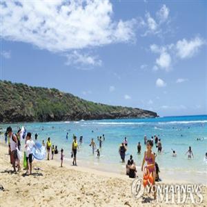 신혼여행,푸껫,신혼부부,하와이