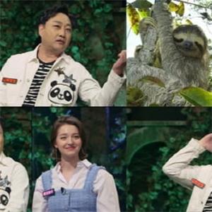동물,퀴즈,김수용,신비,나무늘보