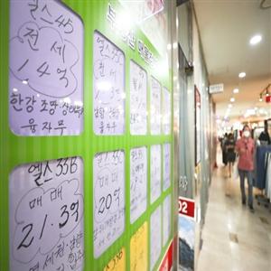 서울,위주,개발,아파트,전용면,잠실,강남,재건축,단지,상승폭
