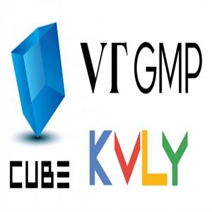 큐브엔터테인먼트,글로벌,프로그램,개발