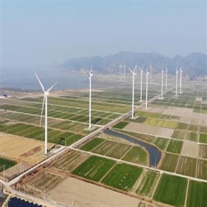 강구풍력발전,프로젝트