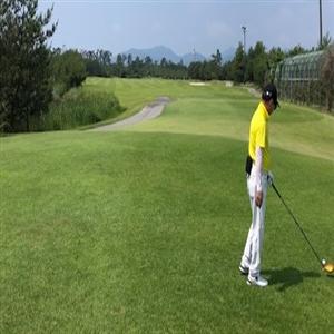 골프,직원
