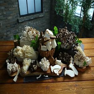 버섯,먹는,영양