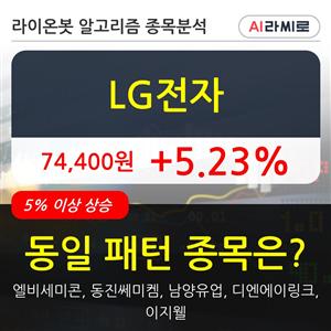 LG전자,기관,순매매량,외국인