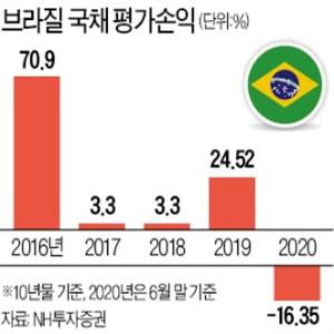 브라질,국채,발생,채권,헤알화,투자자