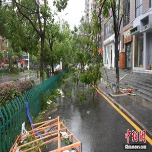 중국,저장성,태풍,홍수,하구핏,오전,전날,가옥
