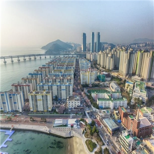 분양권,전매제한,광역시,지역,아파트,정부,시행,대전,인천,부산