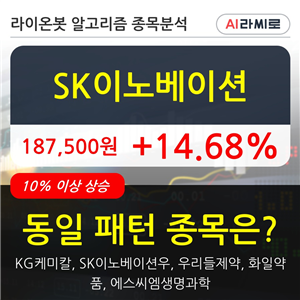 SK이노베이션,시각