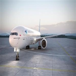 항공기,인도,사고,현지