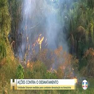 브라질,아마존,열대우림,파괴,협약