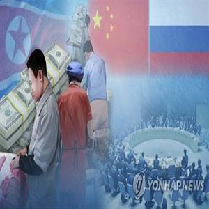 북한,유엔,제출,전문가패널,회원국