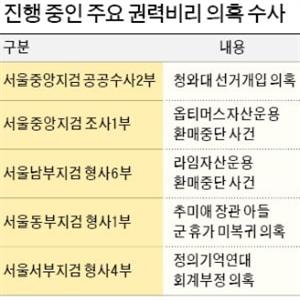 수사,검찰,의혹,주요,장관,청와대,소환,부장검사