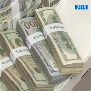 달러,투자,약세,잔고,역시,통화,가운데