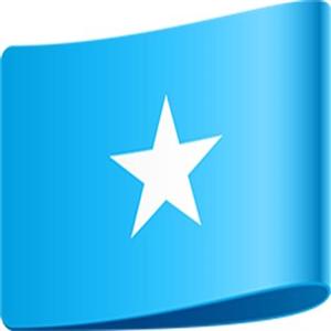 법안,소말리아,결혼,의회,허용