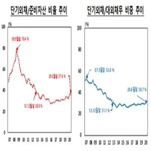 증가,상승,단기외채비율,모두,외채,대외채무