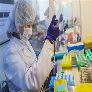 진단키트,코로나19,방식,개발,항체,진단,제품,국내,업체,검사