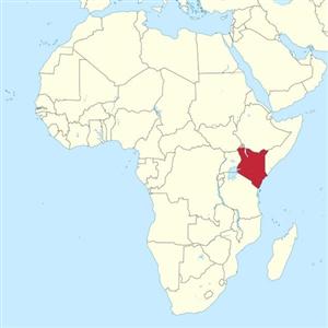 3D,생산,기술,부품,케냐,프린팅,제품,의료장비