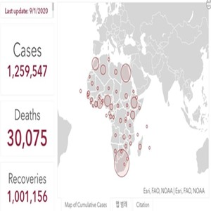 사망,확진,코로나19,아프리카,누적,대륙