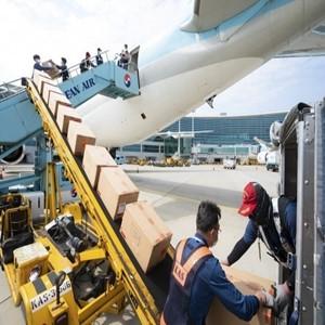 화물,여객기,대한항공,항공기,개조,좌석,코로나19,수송