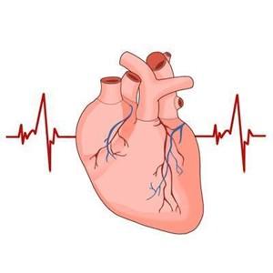 부정맥,위험
