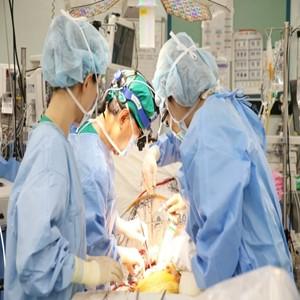 수술,환자,생체간이식,세계,간이식,교수