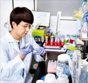 가위,유전자,염기,교정,점돌연변이,기술