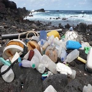 플라스틱,쓰레기,대처,연간,노력