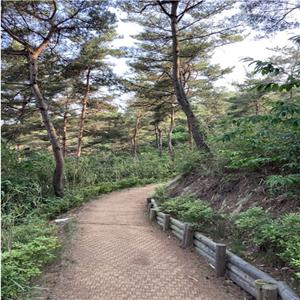 숲길,구간