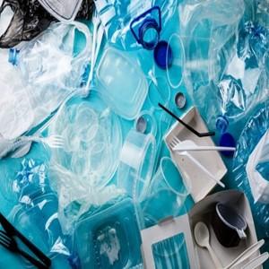 선물세트,플라스틱,포장재,트레이,사용,종이