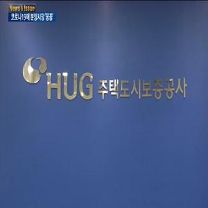 서울,분양,지자체,코로나19