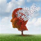 치료제,알츠하이머,밀로이드,베타,개발,제약사,치매,환자,임상시험,다른