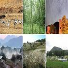 생태관광,원주지방환경청