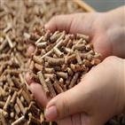 산림,목재,생산,바이오매스,펠릿,발전,산림청