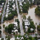 악어,폭우,주민,지역