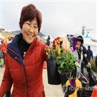 제주시,제주,제공,숲길,연합뉴스,운영,행사