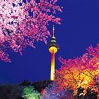 83타워,대구,이월드,벚꽃,놀이기구,어트랙션,스카이드롭,높이,국내,전망대
