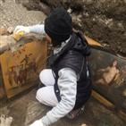 폼페이,모습,벽화,발굴