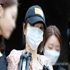 투약,혐의,송치,연예인,경찰