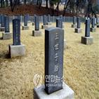 서삼릉,프로그램,서삼릉태실연구소