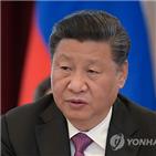 경제,회원국,주석,중국,세계,무역,보호주의,시진핑