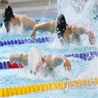 광주,선수,특별취재단,연합뉴스,세계수영선수권대회,대회,우리나라
