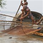 호랑이,수달,맹그로브,방글라데시,지역,밀림,가드,여행,물고기,관광객