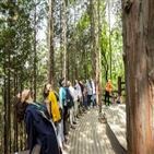 치유숲,인천대공원,산림치유
