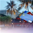 해외,사용,신용카드,분실,카드,도난,부정,카드사