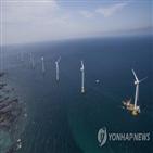 해상풍력,한국,오스테드,덴마크,진출,건설,재생에너지,대만