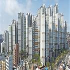 대표,서울,분양가,상한제,재건축,투자,전문가,전망,아파트,부동산