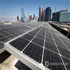 재생에너지,기업,국내,태양광,규모,사용,사업장,구매