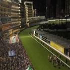 홍콩,취소,시위대,시위,경기,경마,대화,전날,국경절,구의원